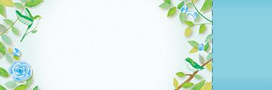 季節・行事・記念日(GW・母の日・父の日・こどもの日)チケットSのデザインテンプレート0228