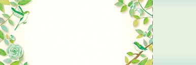 季節・行事・記念日(GW・母の日・父の日・こどもの日)チケットSのデザインテンプレート0232